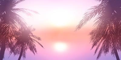 Palme contro un tramonto sull'oceano paesaggio vettore