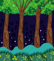 Bella foresta di notte vettore