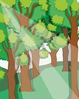 Splendido scenario della foresta vettore