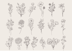 Doodle Set di fiori vettore