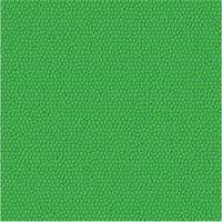 Struttura del modello vettoriale in pelle verde