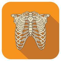 icona piatta delle costole arancione