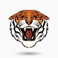 Testa di tigre arrabbiata vettore