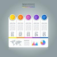 Concetto di business infografica Timeline con 5 opzioni vettore