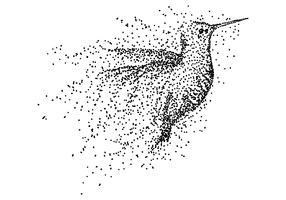 illustrazione vettoriale di particelle di colibrì