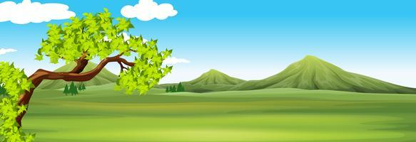 Scena della natura con campo verde vettore
