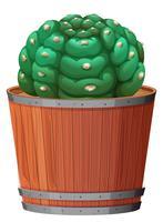 Un cactus nel piatto vettore