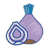gusto vegetale grattugiato di cipolla biologica nutrizione