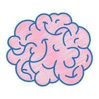 anatomia del cervello umano per creativo e intelletto