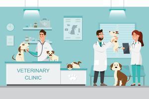 Veterinario e medico con il cane e il gatto sul contatore nella clinica veterinaria vettore