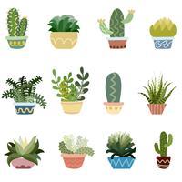 Cactus in set di pentole vettore