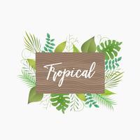 Bordo di nome della struttura delle foglie tropicali vettore