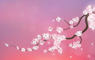 Ramo realistico della ciliegia di sakura Giappone vettore