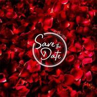 petali di rosa invito a nozze sfondo vettore