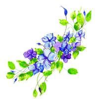 Bella composizione floreale blu e viola dell'acquerello