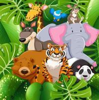 Animali selvatici nella boscaglia