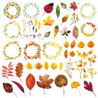 Bella collezione autunno elementi dell'acquerello vettore