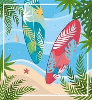 Vista aerea di tavole da surf sulla spiaggia con piante e stelle marine vettore
