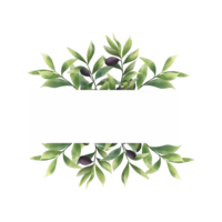 cornice di foglia d'ulivo stile acquerello con spazio per il testo vettore