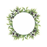 cornice di foglie di ulivo in stile acquerello vettore