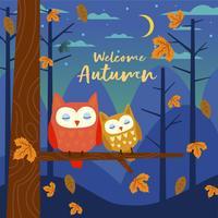 Gufi svegli che dormono nella foresta alla notte nella stagione di caduta di autunno