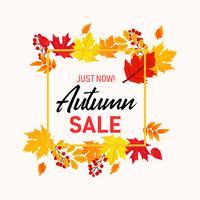 Il fondo dell'insegna di vendita di autunno con la caduta lascia il vettore