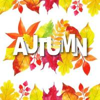 Acquerello tipografia autunno con cornice di foglie vettore
