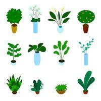 Insieme isometrico di vettore delle piante in vaso