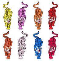 Set di tigri isolato su sfondo bianco. vettore