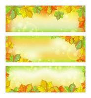 Insieme delle bandiere orizzontali di autunno con le foglie cadute della castagna