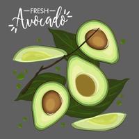 Collezione di avocado fresco