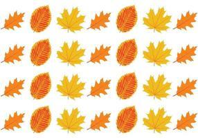 Insieme di autunno foglia modello