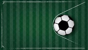 Pallone da calcio o calcio nella rete sul fondo dell'erba verde