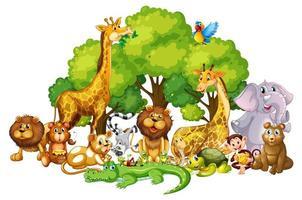 Molti simpatici animali nel parco vettore
