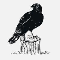 Corvo nero disegnato a mano sul ceppo di albero