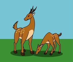 Le femmine di cervo proteggono il bambino mentre mangiano.