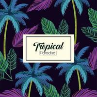 etichetta tropicale e fondo delle piante delle foglie vettore