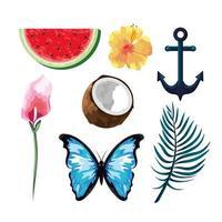 impostare frutti tropicali con fiori e farfalle con ancora vettore