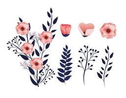 impostare piante di fiori esotici con foglie di rami tropicali vettore