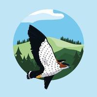 Falco che vola nel paesaggio