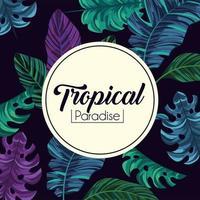 etichetta tropicale e sfondo di piante di foglie esotiche