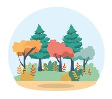 pini e alberi con rami foglie e cespugli vettore