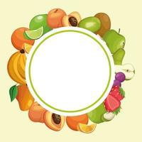 Cartoni animati a cornice rotonda di frutta vettore