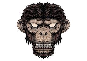 Punto di testa di scimmia vettoriale