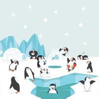 gruppo di pinguini nel polo nord che svolgono diverse attività vettore