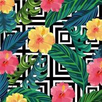 fiori tropicali piante e foglie di sfondo vettore