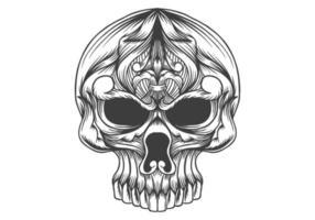 cranio testa decorazione illustrazione vettoriale