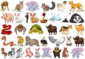 Set di diversi animali