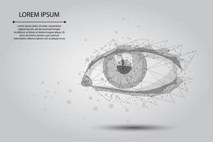 Occhio umano poli basso vettore
