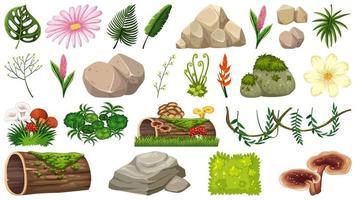 Insieme di oggetti naturali vettore